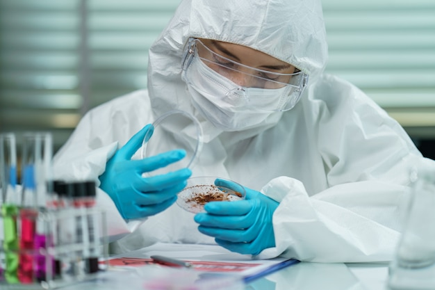 Coronavirus testing process: woman hand in blue rubber gloves holding a virus sample in petri dish in laboratory.