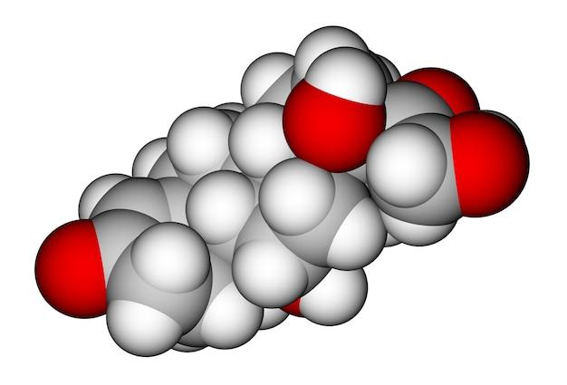 コルチゾール空間充填分子モデル