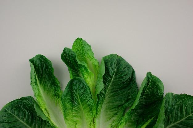 Салат cos салат ромэн салат овощной узор плоский лежал на сером фоне