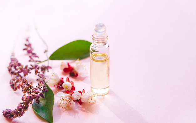 Cosmetic essential oil. bottle with  fresh green plant leaves and flowers and sunlight.aromatherapy treatment. copy space