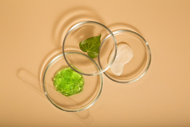 베이지색 배경의 페트리 접시에 있는 화장품 스킨케어 제품. 알로에 젤, 실험실 유리 제품의 미용을 위한 모이스처라이저 크림 천연 화장품. 평면도.