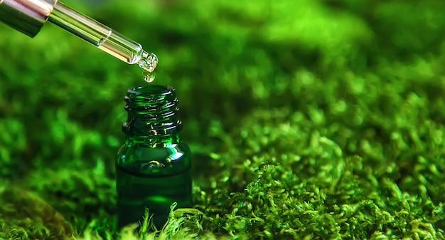 ボトルに入った化粧品とコケのエッセンシャルオイル。ナチュラルスパ。セレクティブフォーカス。自然。