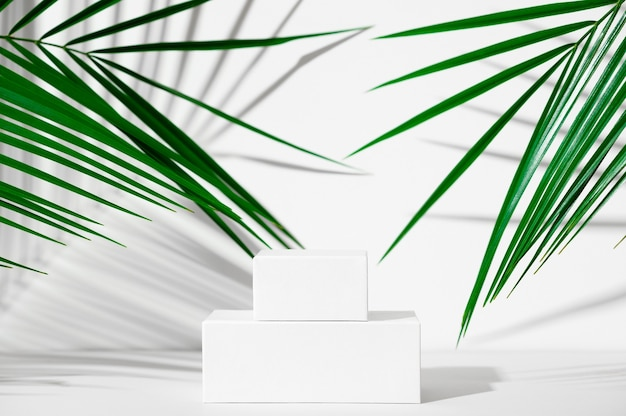 화장품 제품 광고 스탠드. 야자수 잎과 그림자가 있는 흰색 배경에 기하학적 모양이 있는 흰색 연단을 전시합니다. 제품 포장을 표시하기 위한 빈 받침대. 모형.