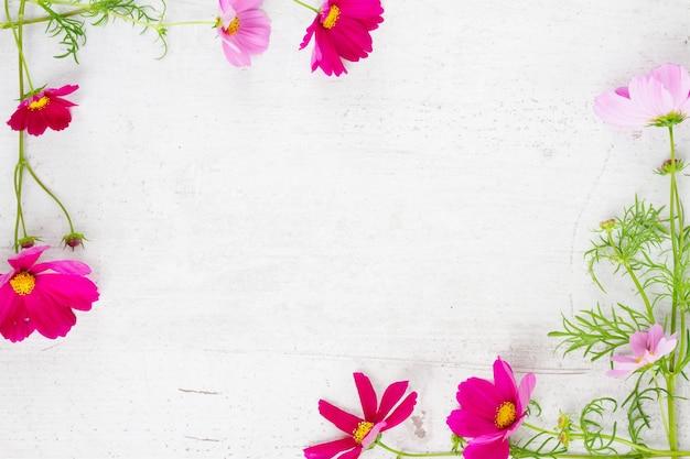Рамка из свежих цветов космоса на белом деревянном столе