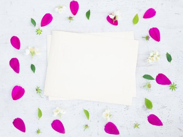 白いテーブルの上のコスモス新鮮なピンクの花お祝いフレーム構成