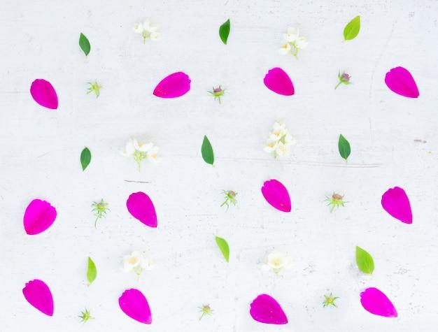 コスモスピンクの花は白いテーブルの上にお祝いのフラットレイ構成