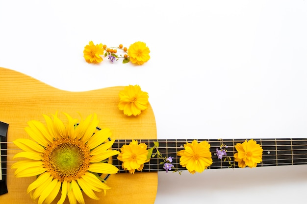 コスモス、アコースティックギターのひまわり