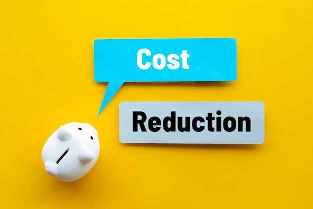Cost reduction or save budget concepts with text and piggy bank.