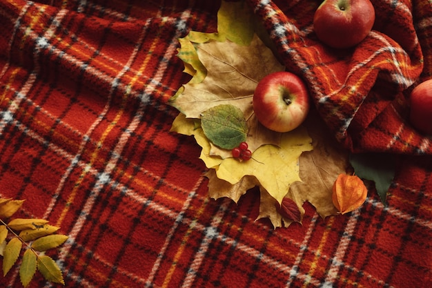 Cosy warm blanket. autumn apples and fall leaves wall