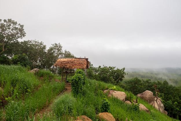 山のコテージと田んぼ。