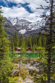 Cottages in lake ohara hiking trail in cloudy day in spring, yoho, canada