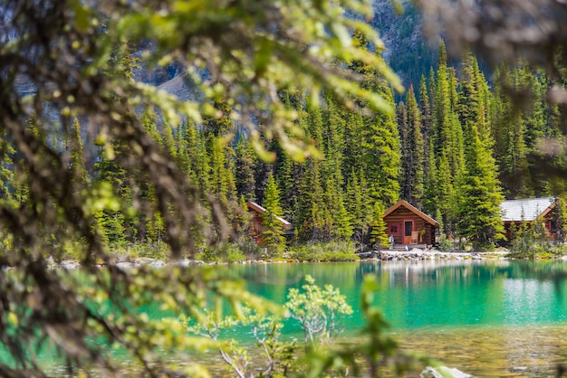 Cottages at lake ohara hiking trail in sunny day in spring, yoho, canada