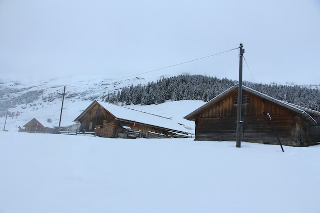 Cottages at the swiss alps of the jungfrau region
