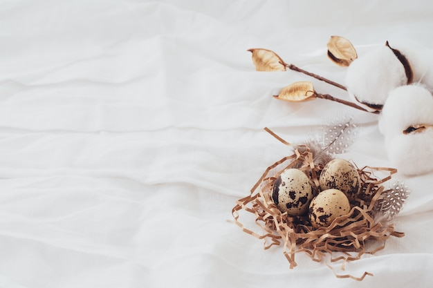 Cotton, easter quail eggs, feathers on a white background. easter beautiful composition, postcard. easter concept, background, copy space.