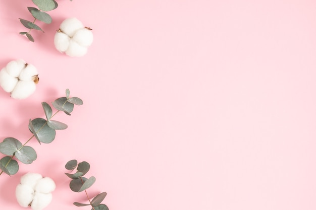 Cotton flowers and eucalyptus leaves on a pastel pink background