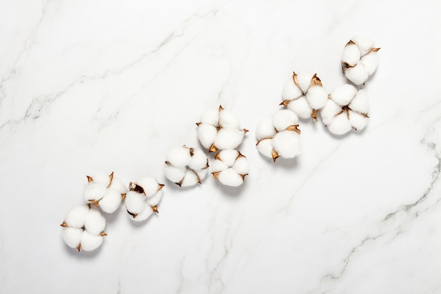 Cotton flowers on a marble surface. natural product concept, decor, home decoration, interior. flat lay, top view