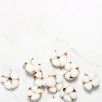 Cotton flowers on a marble surface. natural product concept, decor, home decoration, interior. square. flat lay, top view