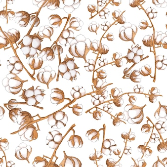 Cotton flowers seamless pattern on white