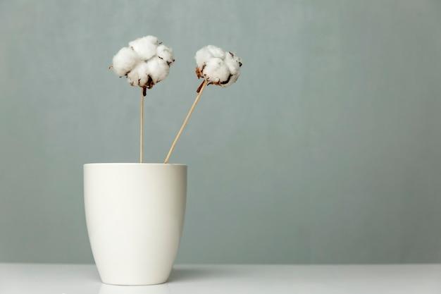 목화 꽃은 회색 벽에 흰색 꽃병에 서 있습니다. 텍스트를위한 공간. 인테리어의 세련된 미니멀리즘.