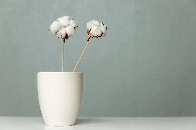 Cotton flowers stand in a white vase against a gray wall. space for text. stylish minimalism in the interior.