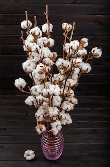 Cotton flowers on a white background. minimalism, background, soft focus