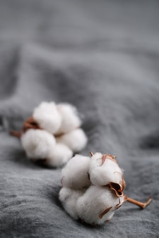 Cotton flowers