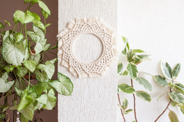 Cotton macrame mandala wall decoration hanging on white wall with green leaves.