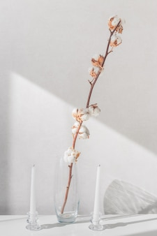 Cotton plant branches in vase and white candles on a white table
