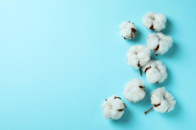青の綿植物の花