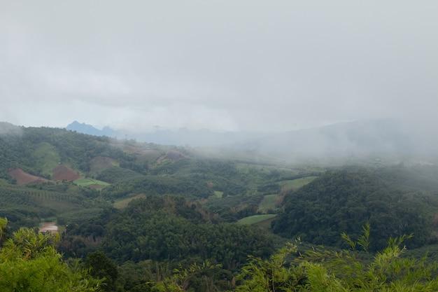 Coudy dark day с туманом в горах