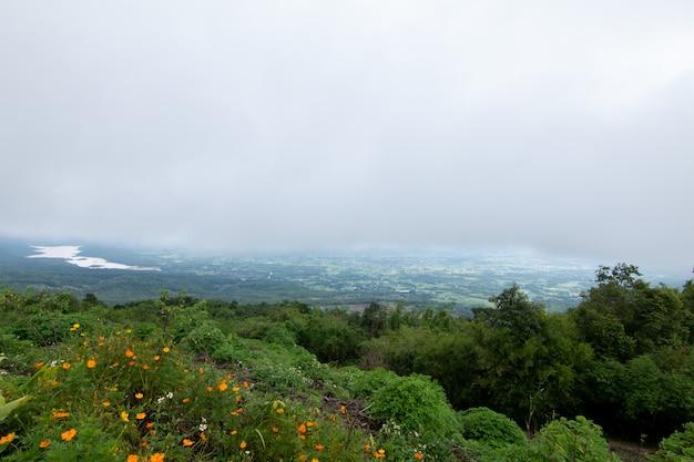 山の霧で暗い昼のcoudy