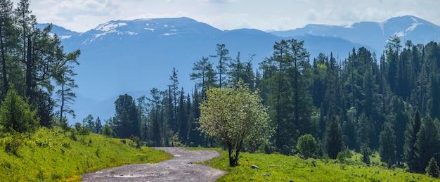 Проселочная дорога в высокогорье, утренний панорамный вид, лес и горы в дымке
