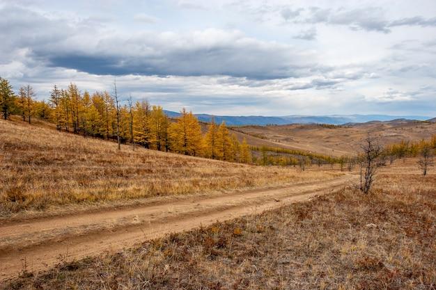 Проселочная дорога в живописных степях с холмами. желтые осенние деревья и коричневая трава. облака в небе. по горизонтали.