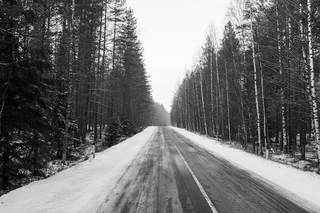 Проселочная дорога зимой. черно белое фото