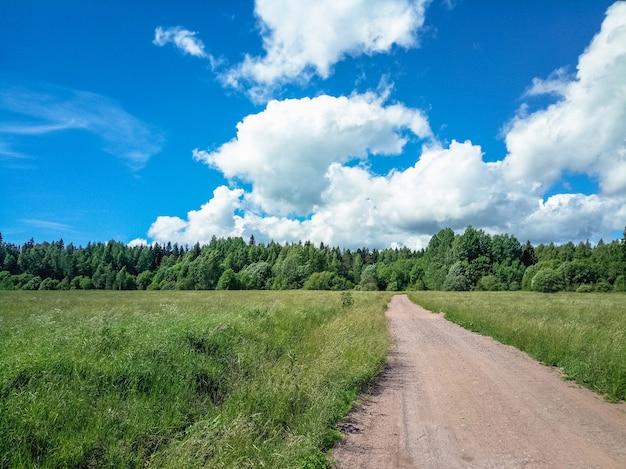구름과 맑은 날에 그린 필드 통해 국가로