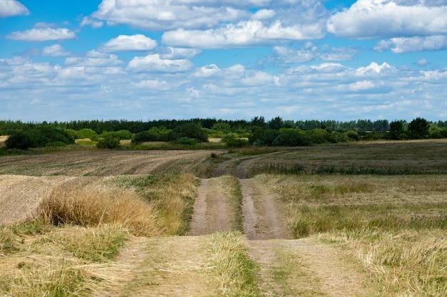 Проселочная дорога через скошенное, убранное, пшеничное поле.