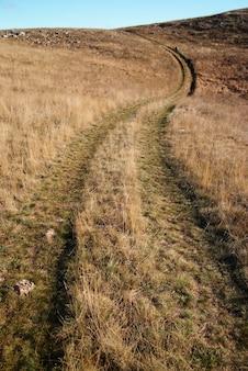 Проселочная дорога через поле травы.