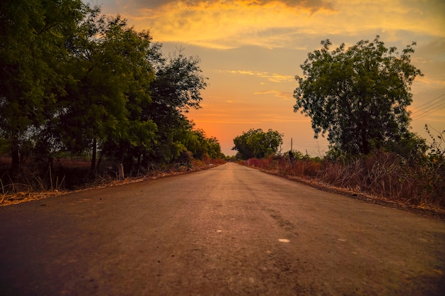 Country road with sunset in background. grey road with trees on both sides and clear colorful evening sky without any vehicles.