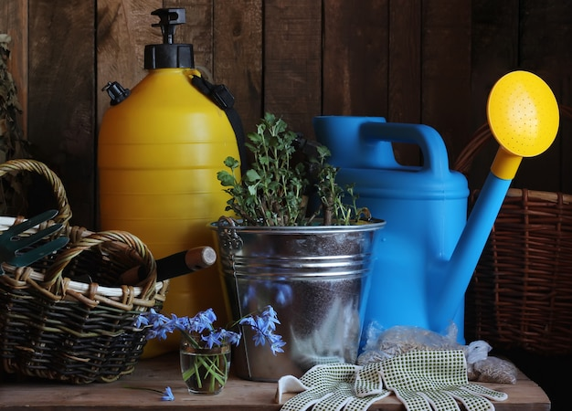 Country still life, set garden tools: watering can, shovel, bucket, gloves on the table. the beginning of the summer season. work in the garden.