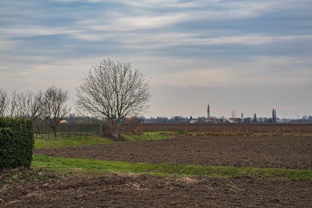 푸르고 흐린 하늘이 있는 겨울의 시골 풍경