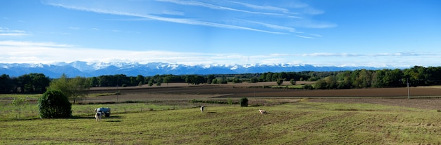 Countryside landscape with pyrenees mountain range
