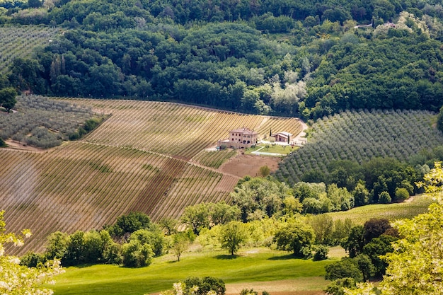 몬테풀치아노 투스카니 이탈리아 근처에 있는 마을 주택이 있는 시골 풍경