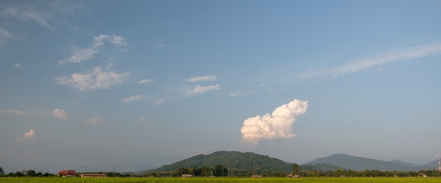 Countryside and rice fields on the indigo blue day.white clouds floating over the mountains