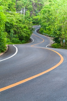 両側に木がある田舎道、道路のカーブ