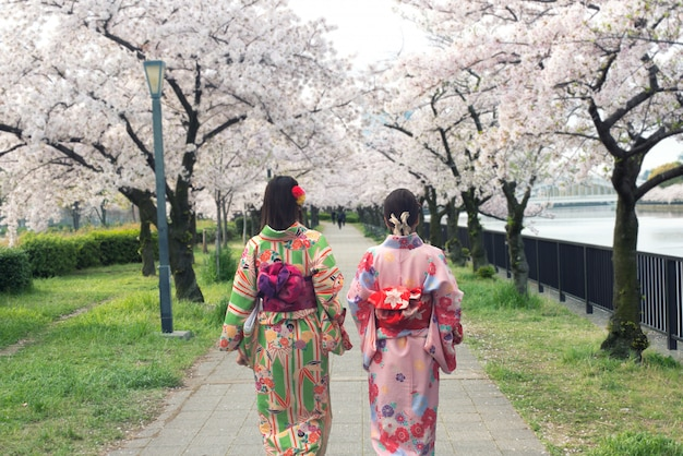Couple asian women wearing traditional japanese kimono in sakura garden in osaka, japan.