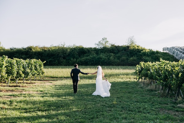 Couple of bride and groom holding hands, walking on green grass.