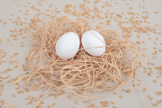 白い背景の上のカップルの茶色の鶏の卵。高品質の写真