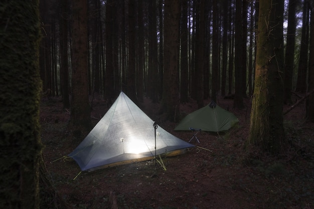 Couple of camping tents mounted in the middle of the woods