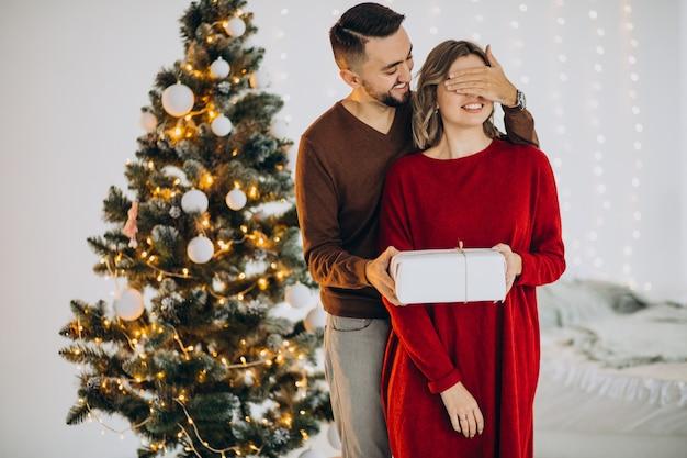 Пара вместе празднует рождество