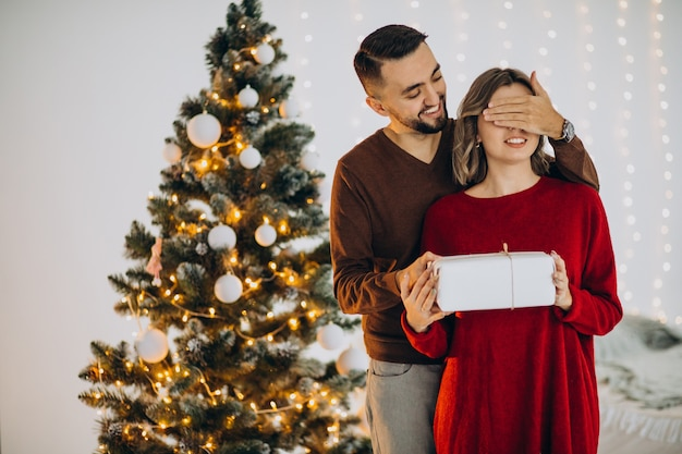 Couple celebrating christmas together